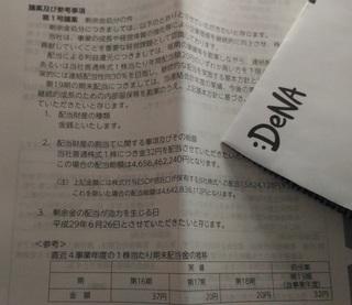 0610_Dena_haito1.jpg